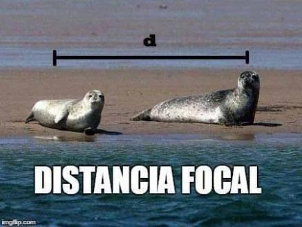 distancia_focal