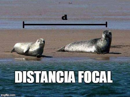 distancia_focal